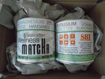 SBT Seabuckthorn Wellness Matcha