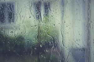 Rain | Rosy JulieBC