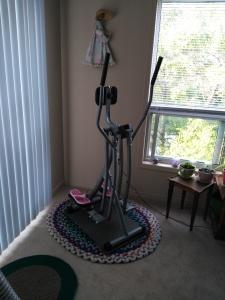 Strider Exercise Machine | Rosy JulieBC